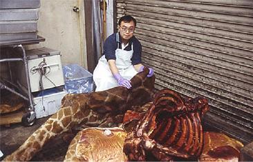 動物の遺体を解剖して見えてくる生命の謎・進化の不思議(東京大学・遠藤秀紀教授)2012/9/27